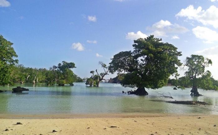 Pantai Oeseli   Dokumentasi pribadi