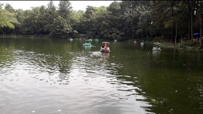 Objek wisata Talaga remis yang mempunyai spot cantik pemandangan hutan dan telaga (Dokumentasi pribadi)