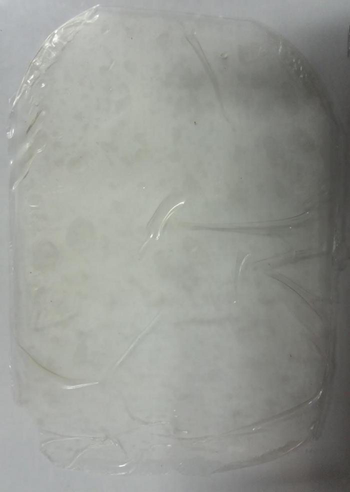 Gambar 2. Bioplastik Eceng Gondok (dokpri)