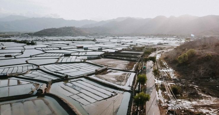 Gambar 3. Areal tambak garam di kabupaten Bima (Dokumentasi pribadi)