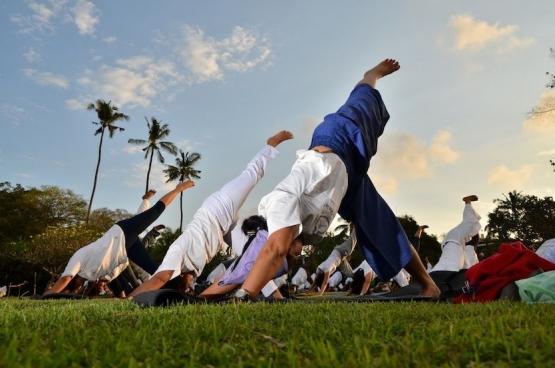 Yoga Asanas Seger Oger, dok SVF