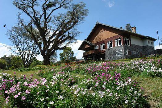 Guest House Kebun Jampit Bondowoso | agro-ptpn12.com