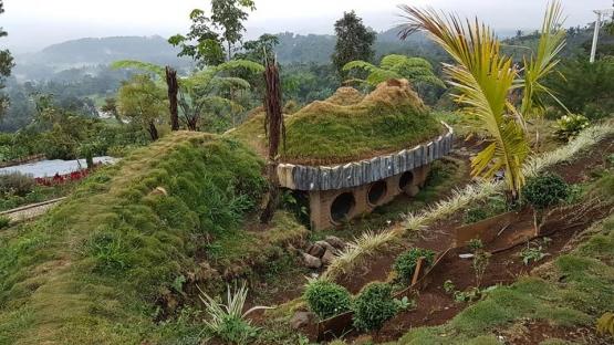 Rumah Hobbit di Kayu Kolek (dokpri)