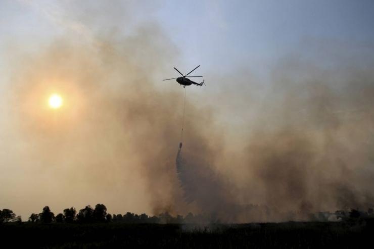 Kebakaran hutan dan lahan di kawasan Rambutan, Kabupaten Ogan Ilir, Sumatera Selatan, Rabu (13/9/2017). (Foto: KOMPAS/ADRIAN FAJRIANSYAH)