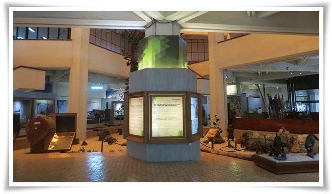 Museum Kehutanan (Foto: https://referensi.data.kemdikbud.go.id)