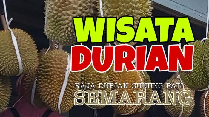 Wisata Durian di Raja Durian (Dokumentasi Pribadi)