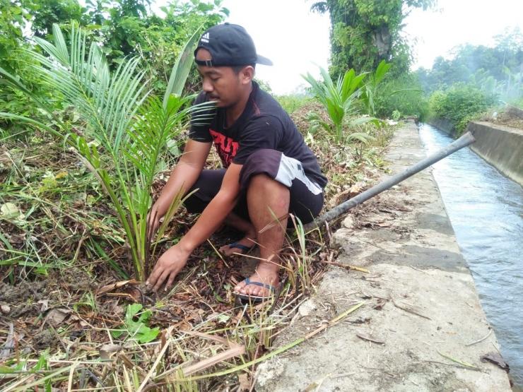Jauhi Covid-19, Masyarakat Desa Pilih Tinggal di Kebun (dok. pribadi)
