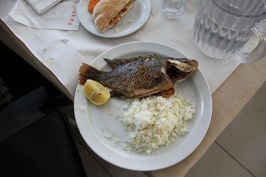 Ikan Petrus