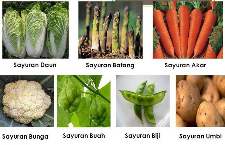 Sayuran dan Buah ( Dok bibitonline.com)