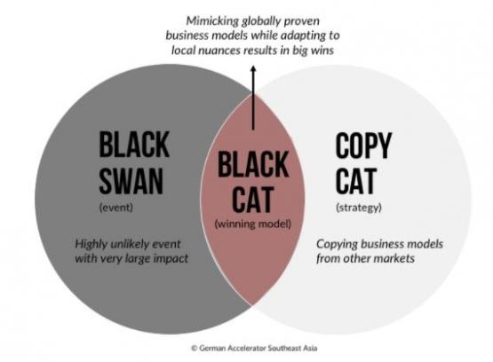 Sumber Gambar: https://www.germanaccelerator.com/blog/black-cats-startup-in-southeast-asia/