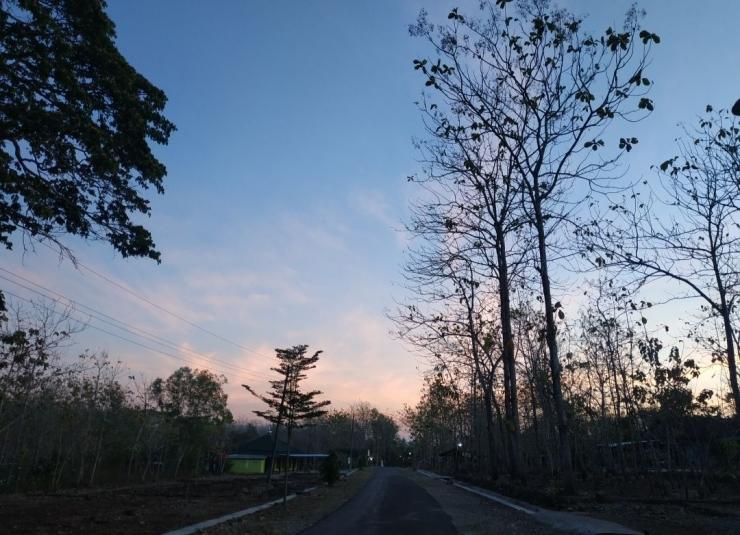 Menikmati udara pagi saat jalan-jalan pagi. Dokpri