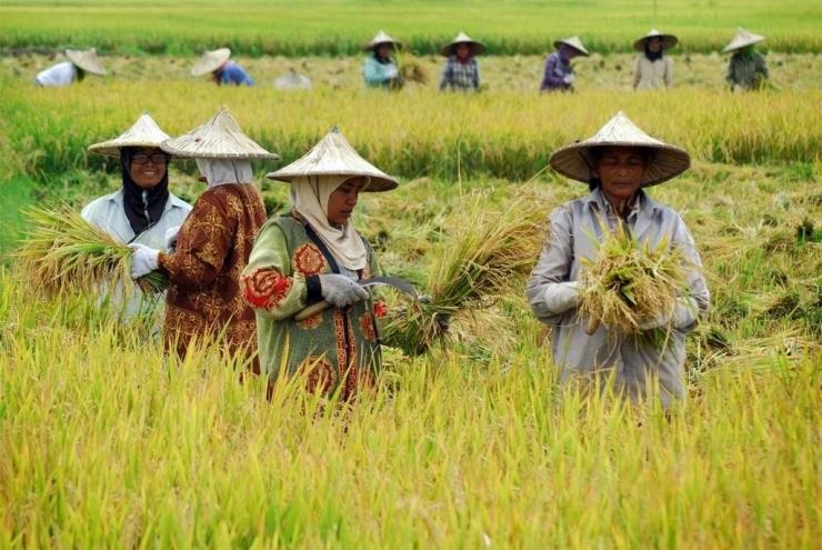 (Foto: www.koran-jakarta.com)