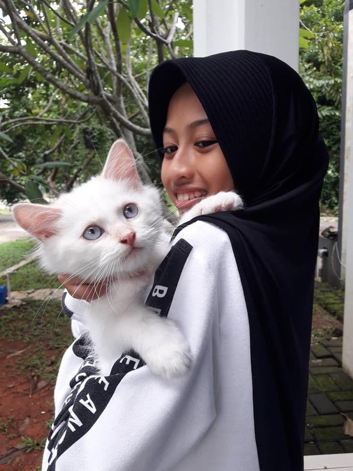 Nama Nama Kucing Yang Unik Kompasiana Com