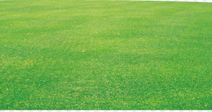 gambarlapangan.blogspot.com