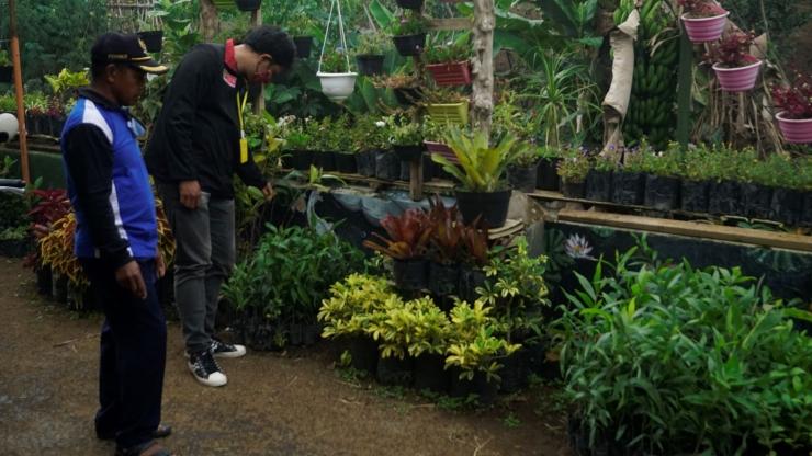 Pembagian Bibit Tanaman Kehutanan dan Buah-buahan Oleh Kelompok PMM UMM 55 yang dikoordinir Kepala Dusun Krajan, Gadingkulon (Dokpri)