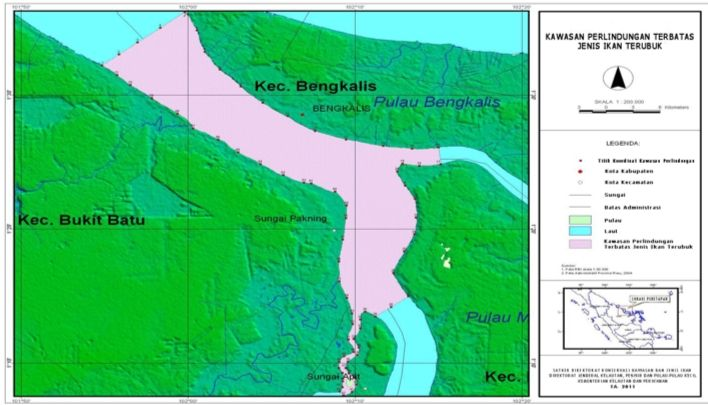 Mengenal Biota Laut: Primadona Ikan Riau yang Kian Langka ...