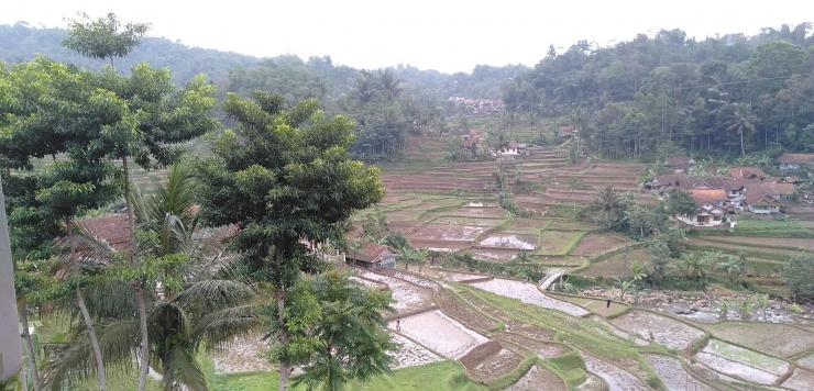 Kampung Wanasigra, Tasikmalaya   koleksi pribadi