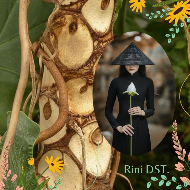 Wanita dan Tanaman hias 2021. Desain oleh Rini DSR, menggynakan Canva. Gambar diambil dari Pixabay.