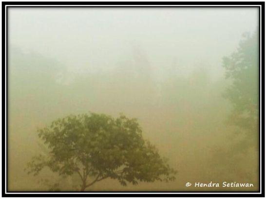 Kabut pagi hari setelah semalam hujan turun (foto: dok. pribadi)