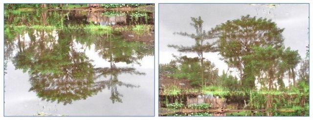 Satu gambar beda makna jika dilihat dalam perspektif yang berbeda. Kiri dalam keadaan normal dan kanan jika dibalik. Beda perspektif, hasilnya juga berbeda (foto: dok. pribadi)