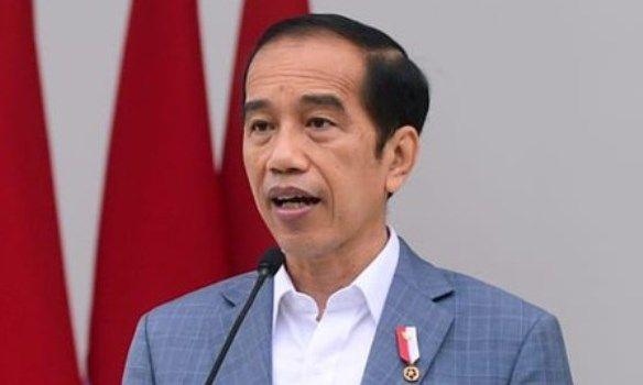 Presiden Jokowi (Dok Detik.com)