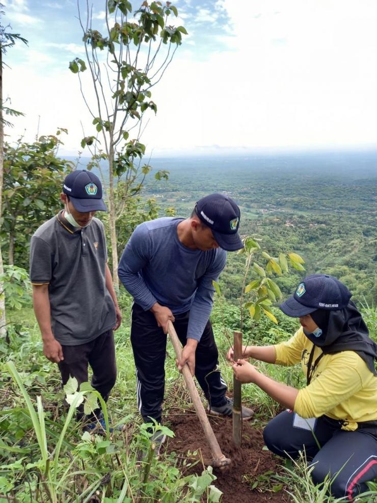 Dokumentasi Pribadi Penanaman pohon di Gunung Blego