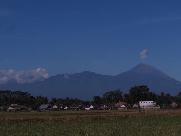 Wilayah Persawahan Desa Glanggang (Dokpri)