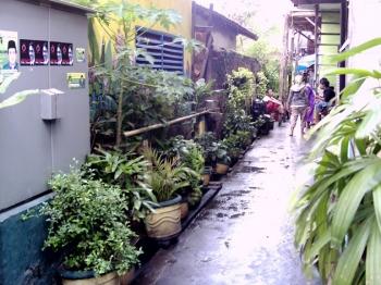 940+ Gambar Lingkungan Rumah Bersih Dan Kotor Gratis Terbaik